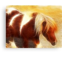 Little pony Canvas Print