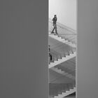 MoMA by AJM Photography