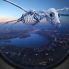 The Flight Home by billyboy