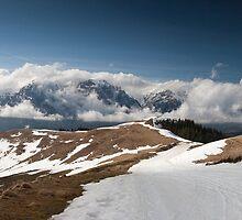 Bucegi Panorama  by Bogdan Ciocsan
