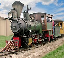Narrow Gauge Train by ECH52