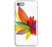 Dharma Burst iPhone Case/Skin