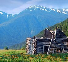 Log cabin at Alice Arm by Istvan Hernadi