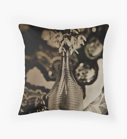 Trapping Spring on Glass Throw Pillow