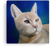 Binky Canvas Print