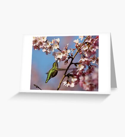 Sipping Nectar From a Floral Cup Greeting Card