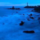 Blue Pigeon Point by Zane Paxton