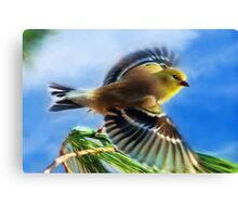 Flying Goldfinch Painting Canvas Print