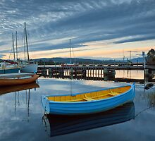 Morning on the Huon River at Franklin #2 by Chris Cobern