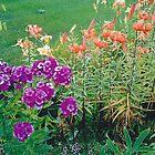 THE ENCHANTED GARDEN: PURPLE AND ORANGE FLOWERS by BonaParte