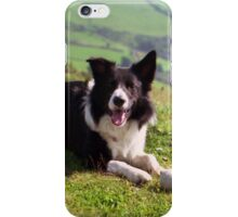 Indy: 19th March 1998 to 19th December 2011  iPhone Case/Skin