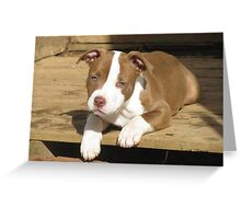 Lilah Greeting Card