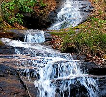 A Bartram Trail Cascading Waterfall by Jean Gregory  Evans