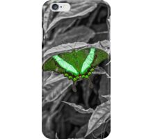Green-banded Peacock - selective colour iPhone Case/Skin