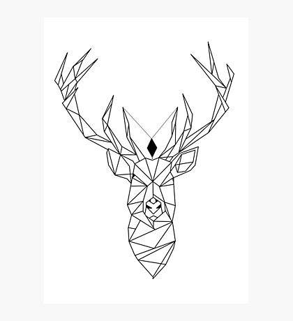 Deer Photographic Print