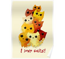 I love cute cats! Poster