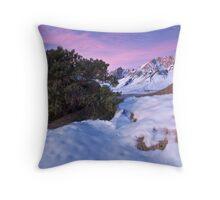 Buttermilk Sunrise Throw Pillow