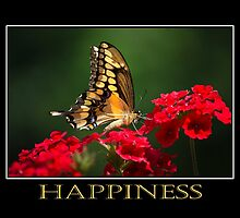 Inspiring Happiness by Christina Rollo