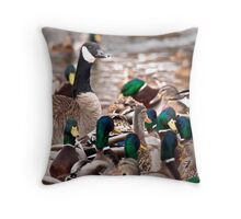 Gotchyer Tail Feathers Throw Pillow