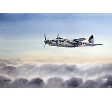 Mosquito Aircraft Photographic Print