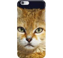 Siberian Sand Cat iPhone Case/Skin