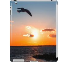Relaxation Therapy iPad Case/Skin