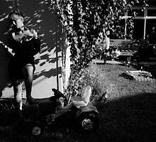 leaf shadow # 6 by Solvejg