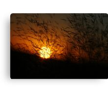 Free State Sunset - Petrusburg, South-Africa  Canvas Print