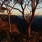Sunrise - Bryce's Gorge, Alpine National Park by Rick Box