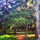 Morning walk by armine12n