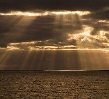 The golden rain by armine12n