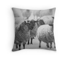 Well At Least The Weathers Improved ! Throw Pillow
