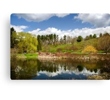 Spring Reflection Landscape Canvas Print