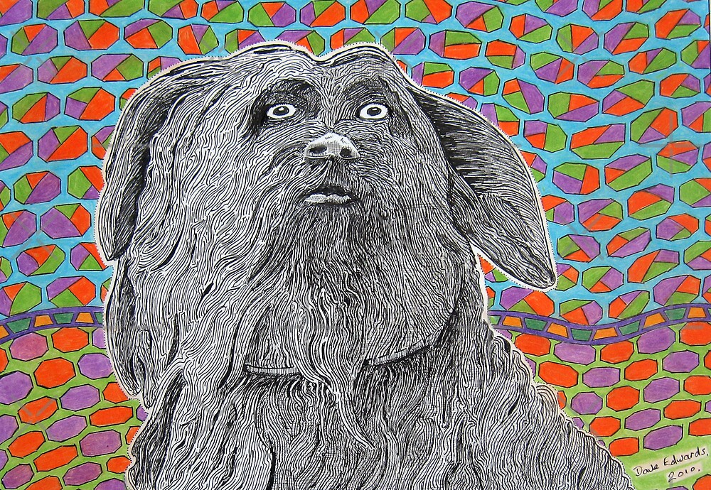 295 - GREYFRIAR'S BOBBY - DAVE EDWARDS - INK & COLOURED PENCILS - 2010 by BLYTHART