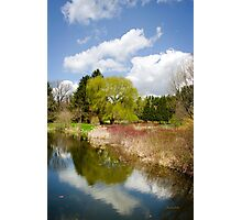 Spring Reflection Landscape Photographic Print