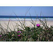 Delicate Dune Photographic Print
