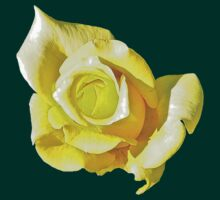 Lemon & Lime Rose by Ron Marton