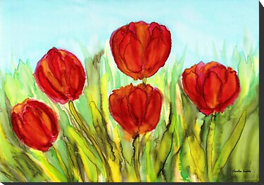 Red Tulips by Caroline  Lembke