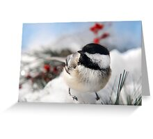 Chilly Chickadee Greeting Card