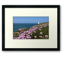 Sea Pinks Framed Print