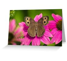 Pretty Butterfly with Flowers Greeting Card