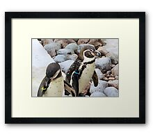 I think I've lost weight Framed Print