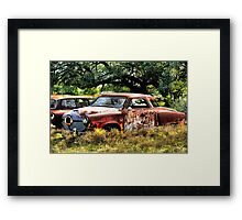 Sign's Of Extreme Neglect     ( BoneYard Series ) Framed Print