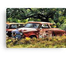 Sign's Of Extreme Neglect     ( BoneYard Series ) Canvas Print