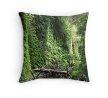 Fern Canyon, Northern California Throw Pillow