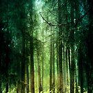 Enchanted by armine12n
