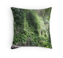 Green walls_Fern Canyon Throw Pillow