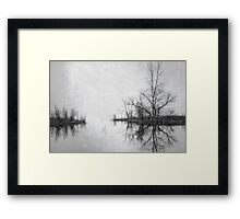 Seeing Double Framed Print