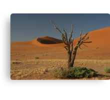Dead tree and dunes Canvas Print
