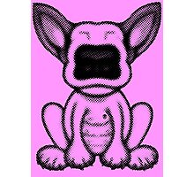 Black Dot English Bull Terrier Puppy Design Photographic Print